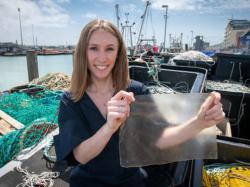 Британка створила біопластик з рибних відходів, який розкладається за 2 місяці