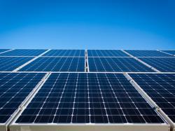Бактерії кишкової палички підвищують ефективність сонячних панелей