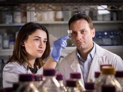 Диво-наклейка, що визначає небезпечні бактерії в м'ясі